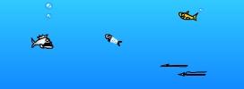 Afrofish